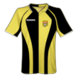 Botev Plovdiv home kit