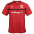Cardiff home kit